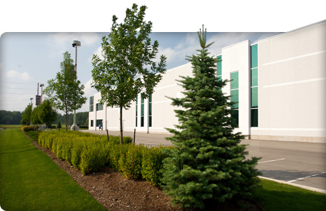Commercial landscape property