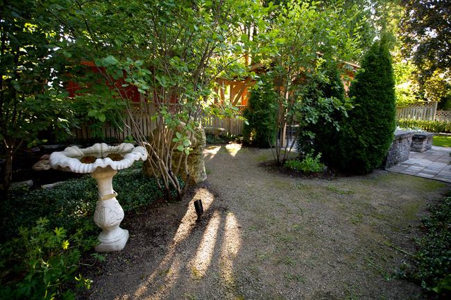 Naturalized Garden Space