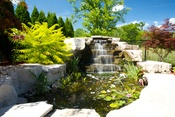 Oakville landscape project gallery